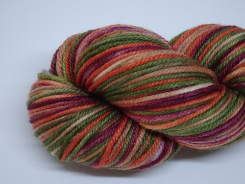 Annona 8ply Superwash Merino/Nylon Silk Yarn-